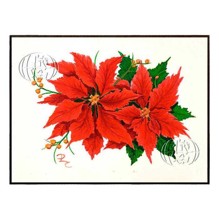 """Poinsettia"" de David L. CAWTHORNE"