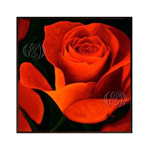 """Apricot Flame"" de Maria Ilona HUPPI"