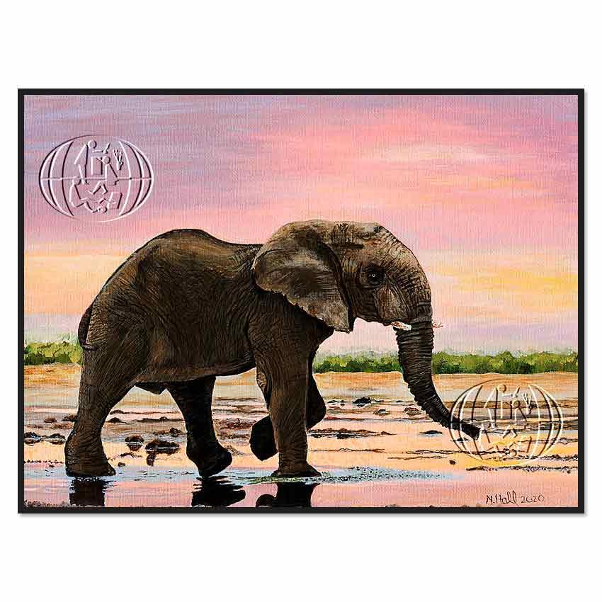 """Elefante al atardecer"" de Nancy Hall"